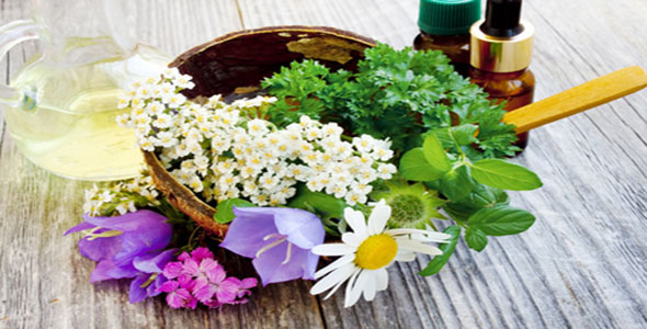 Effective Natural Remedies For Hyperactivity - Eight Calming Herbs